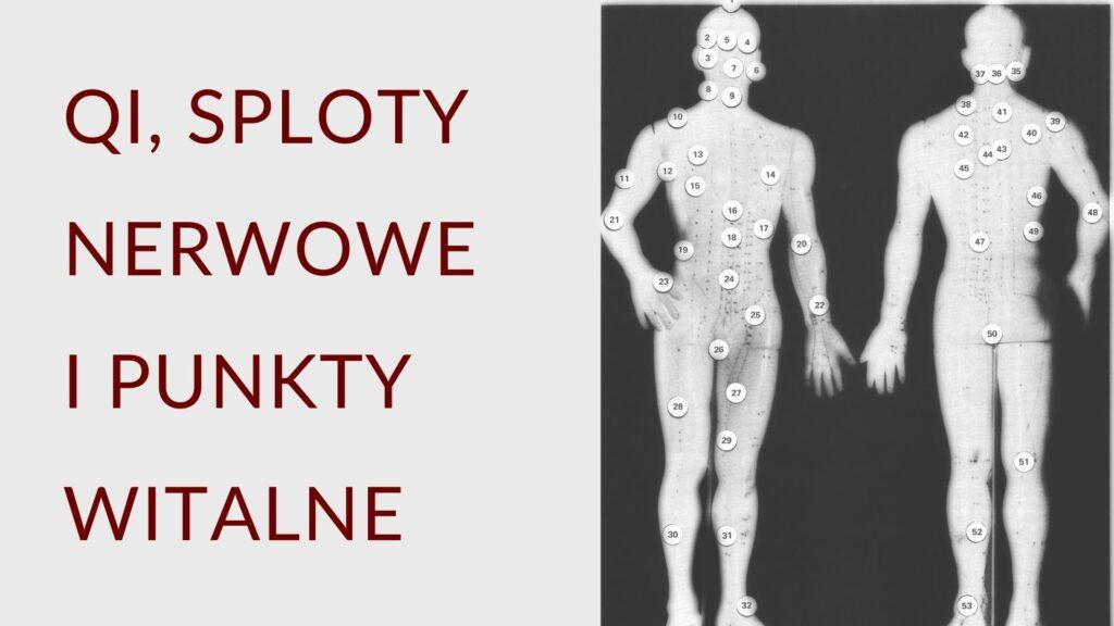 Qi, sploty nerwowe i punkty witalne (1)